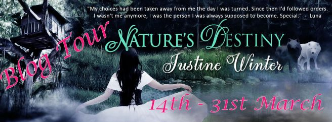 ND Blog Tour Banner